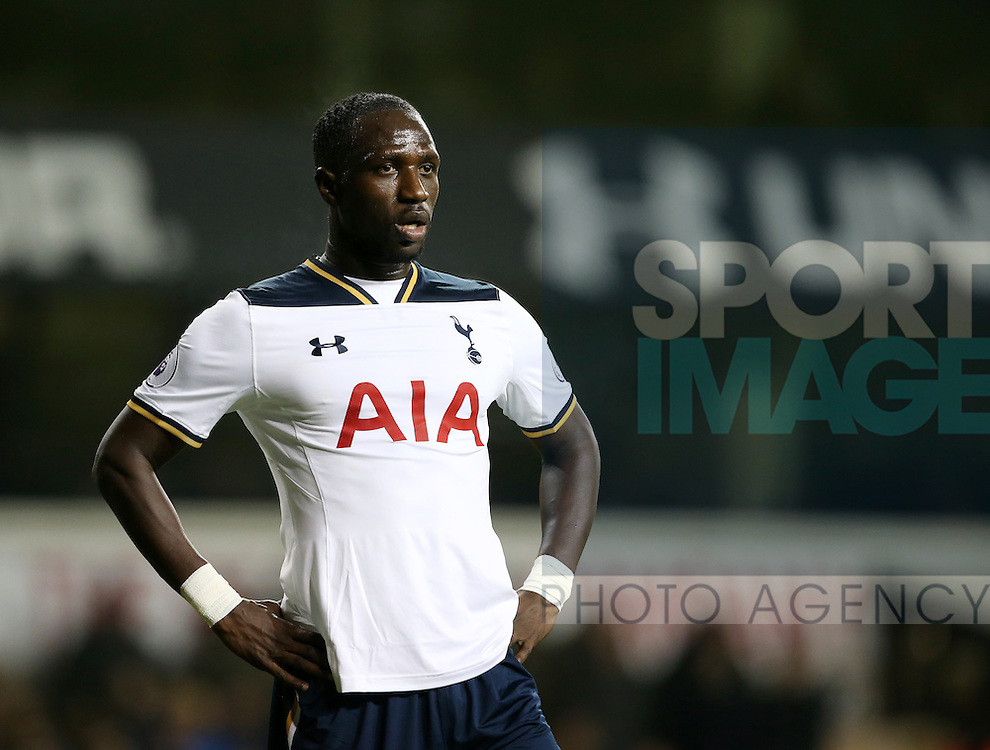 Tottenham's Moussa Sissoko in action during the Premier League match at White Hart Lane Stadium, London. Picture date December 18th, 2016 Pic David Klein/Sportimage