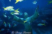 Christ of the Abyss statue, Key Largo Dry Rocks, Key Largo, Florida Keys National Marine Sanctuary, Florida ( Western Atlantic Ocean )