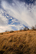 Clouds roll over the Arizona National Scenic Trail in March at Gardner Canyon, Coronado National Forest, Santa Rita Mountains, north of Sonoita, Arizona, USA.