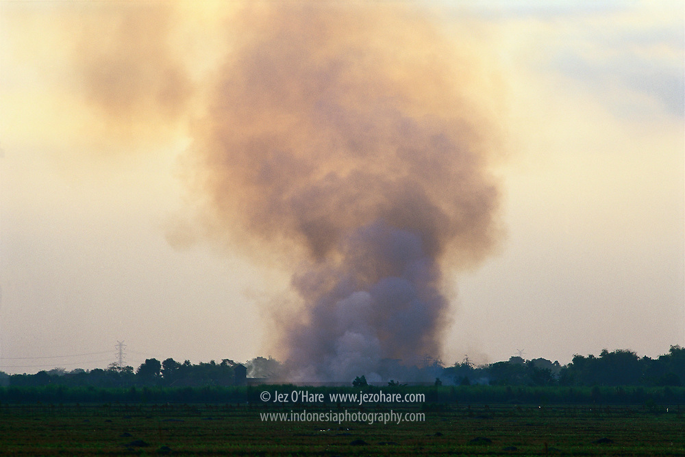 Agricultural burning after harvesting, East Java, Indonesia.