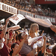 South Carolina Gamecocks fans cheer after watching Bryan Edwards make a touchdown catch during a college football game at Williams-Brice Stadium in Columbia, S.C. ©Travis Bell Photography
