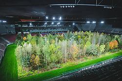 THEMENBILD - For Forest ist ein Kunstprojekt des Installationskünstlers Klaus Littmann, das am 8. September 2019 in Klagenfurt für die Öffentlichkeit geöffnet wurde. 299 rund 14 Meter hohe Bäume wurden im Wörthersee Stadion im Sommer auf das Spielfeld gestellt, die man bis zum 27. Oktober bei freiem Eintritt ansehen kann. Klagenfurt am Freitag, 13. Oktober 2019 // For Forest is an art project by installation artist Klaus Littmann, which was opened to the public in Klagenfurt on September 8, 2019. In the summer, 299 14-meter-high trees were put on the pitch at the Wörthersee Stadium, which can be viewed free until 27 October. Klagenfurt, Austria on Friday, October 13, 2019. EXPA Pictures © 2019, PhotoCredit: EXPA/ Peter Gruber