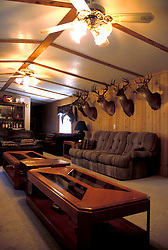 Stock photo of many stuffed animal heads lining the walls of a Texas hunting cabin