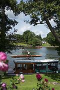 "Maidenhead, United Kingdom.  ""Single"", ""Thames Punting Club Regatta"", Bray Reach.<br /> 12:02:13 Sunday  06/08/2017<br /> <br /> [Mandatory Credit. Peter SPURRIER Intersport Images}.<br /> <br /> LEICA Q (Typ 116) 28mm  f1.7   1/6400 /sec    100 ISO River Thames, .......... Summer, Sport, Sunny, Bright, Blue Skies, Skilful,"