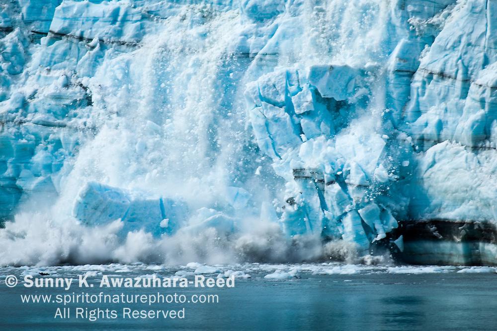 Close up of Margerie Glacier calving, Huge piece of ice falling off. Glacier Bay National Park & Preserve, Southeast Alaska.