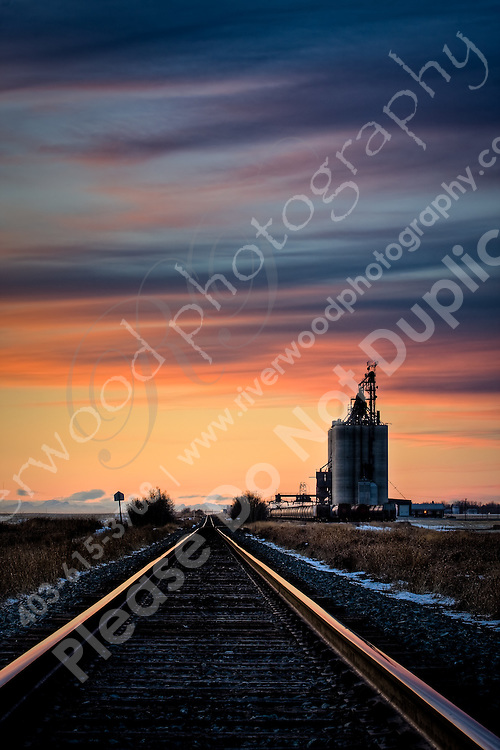 January 8, 2008 -- East of Calgary near Indus, Alberta, Canada.  The silos of granaries on railway sidings tower over the landscape across the prairies.  The growing world demand for grains for food and ethanol has resulted in record prices for grains and other traditional food crops recently...©2008, Sean Phillips.http://www.Sean-Phillips.com