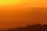 Mountains of temperate rain forest at sunset<br /> At edge of Carmanah-Walbran Provincial Park<br /> British Columbia<br /> Canada