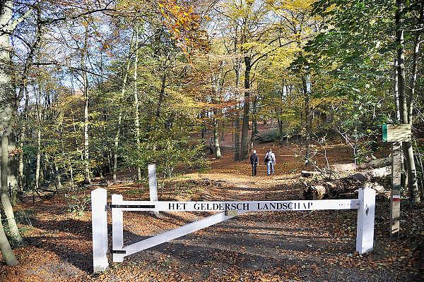 Nederland, Ubbergen, 5-11-2011Het is november en ongewoon warm voor de tijd van het jaar. Het bos staat er in mooie herfstkleuren bij. Blad valt van de bomen en vormt een oranje tapijt.Foto: Flip Franssen/Hollandse Hoogte
