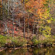 Bald River Calm Stream Fall Color Reflection