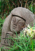 """Hamanoyu flower or """"beach cotton"""" is found all over the Izu islands, as are these heads called 'moai' after the mysterious heads on Easter island."""