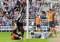 Football - Premier League -  Newcastle United vs. Wolverhampton Wanderers<br /> Shola Ameobi (Newcastle United) celebrates his goal at St James' Park.