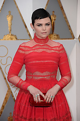 Ginnifer Goodwin arriving for the 89th Academy Awards (Oscars) ceremony at the Dolby Theater in Los Angeles, CA, USA, February 26, 2017. Photo by Lionel Hahn/ABACAPRESS.COM
