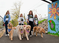 """Cindy Otterson with """"Mapiya"""", Keisha Boissoneau with """"Montana"""", Michelle Dupont with """"Diamond"""" and Annie Boissoneau with """"Keegan"""" enjoyed a Saturday morning walk along the WOW Trail with hundreds of other dogs and their owners during the 1st annual BOW WOW Fest presented by the WOW Trail and the NH Humane Society.  (Karen Bobotas/for the Laconia Daily Sun)"""