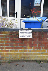 Dog mess despite homeowner's request to dog owners to stop their dogs messing the pavement, Norwich UK April 2019