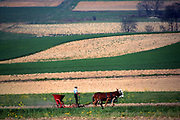 Amish field design and horse team and Amishman spreading seed or fertilizer.