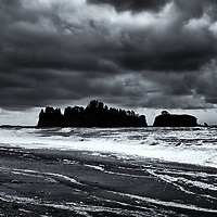 Quinault Rain Forest, Olympic National Park, Rialto Beach, Mora National Park, WA<br /> edited & converted to B&W 4/17/18