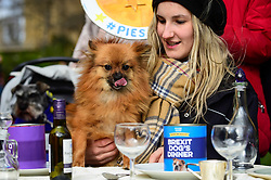 """© Licensed to London News Pictures. 10/03/2019. LONDON, UK.  A Pro-Remain owner and their dog in Victoria Park Gardens, next to the Houses of Parliament, for """"Brexit is a Dog's Dinner"""", a protest to urge MPs to vote to ensure that a no-deal Brexit is avoided and to give the people of the UK a final say.  Next week, there will be a series of up to three votes in the House of Commons where MPs will vote on whether to accept Theresa May's Brexit deal.  Photo credit: Stephen Chung/LNP"""