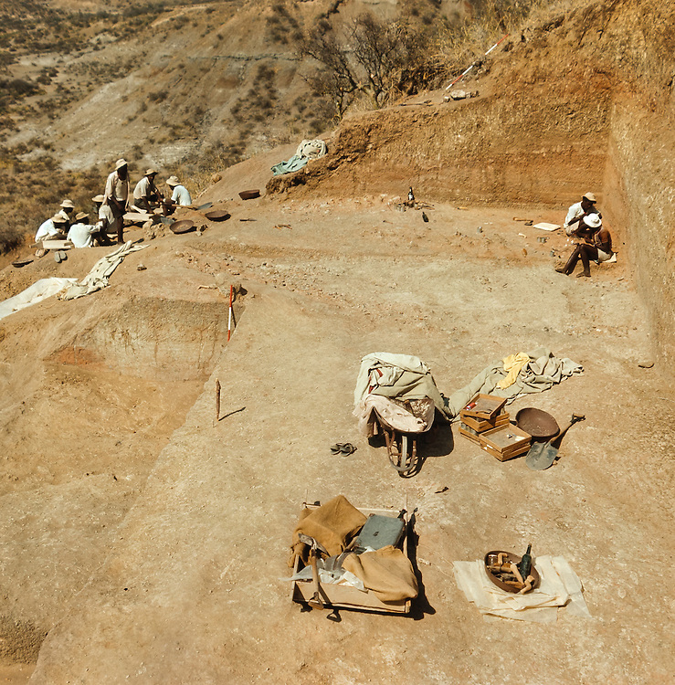Workers clean and catalog archeological artifacts from dig site at Oduvai Gorge, in Tanzania