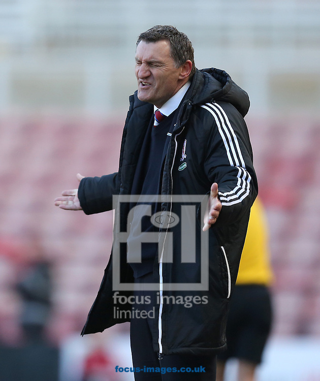 Picture by Paul Gaythorpe/Focus Images Ltd +447771 871632.27/04/2013.Middlesbrough manager Tony Mowbray during the npower Championship match at the Riverside Stadium, Middlesbrough.