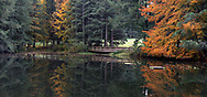 Reflections of autumn foliage on the pond at Godwin Farm Biodiversity Preserve in Surrey, British Columbia, Canada