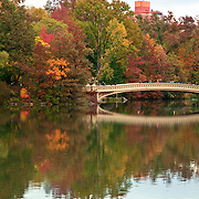Autumn View of Bow Bridge in Central Park, New York CIty