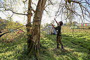An environmental activist is seen practising the tree climbing craft, which is one of the methods they use in an attempt to climb on the trees that are marked to be cut by the HS2 workers in the HS2 construction site in Crackley Woods, Coventry on Tuesday, April 14, 2020. (Photo/Vudi Xhymshiti)