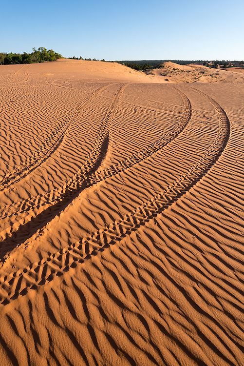 Tracks of illegal off road vehicle use in the Moquith Mountain Wilderness Study Area in Southern Utah.