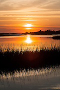 Morning at the Marsh in Murrells Inlet