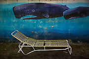 USA-California-poolside mural of whales with lounger in front.