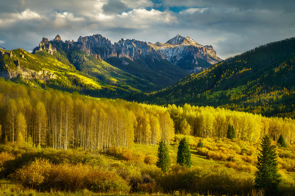 Beautiful aspens and dramtic strom light in the San Juan Mountains, Colorado, USA