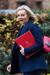 London, December 05 2017. Chief Secretary to the Treasury Elizabeth Truss arrives at 10 Downing Street to attend the weekly cabinet meeting. © Paul Davey