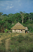 PRIMARY RAINFOREST, Amazon, near Boavista, northern Brazil, South America. Traditional Macuxi tribal hut on the top of a hill. Ecological biosphere and fragile ecosystem where flora and fauna, and native lifestyles are threatened by progress and development. The rainforest is home to many plants and animals who are endangered or facing extinction. This region is home to indigenous primitive and tribal peoples including the Yanomami and Macuxi.
