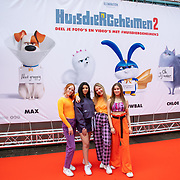 NLD/Amsterdam/20190602 - Familiepremière Huisdiergeheimen 2, girlband Remix