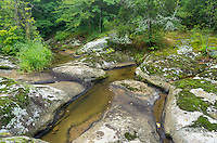 On the side of the road near Mantle Rock, Kentucky, lies this scenic area. McGilligan Creek flows between moss covered rocks which looked especially colorful after the rain.<br /> <br /> Date Taken: July 23, 2014