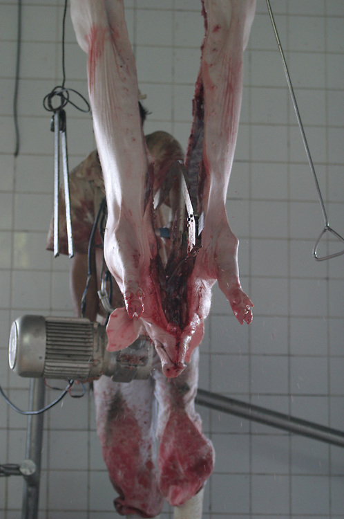 Pedro Leopoldo_MG, Brasil.<br /> <br /> Matadouro em Pedro Leopolodo, Minas Gerais.<br /> <br /> Slaughterhouse in Pedro Leopoldo, Minas Gerais.<br /> <br /> Foto: BRUNO MAGALHAES / NITRO