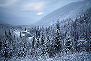 Early Winter Time Beauty, Typical For The Kenai Peninsula Of Alaska