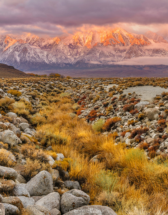 Mount Williamson and Arroyo after Storm at Dawn, BLM Lands, Inyo County, California