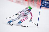 Tecnica Cup giant slalom at Gunstock January 28, 2012.