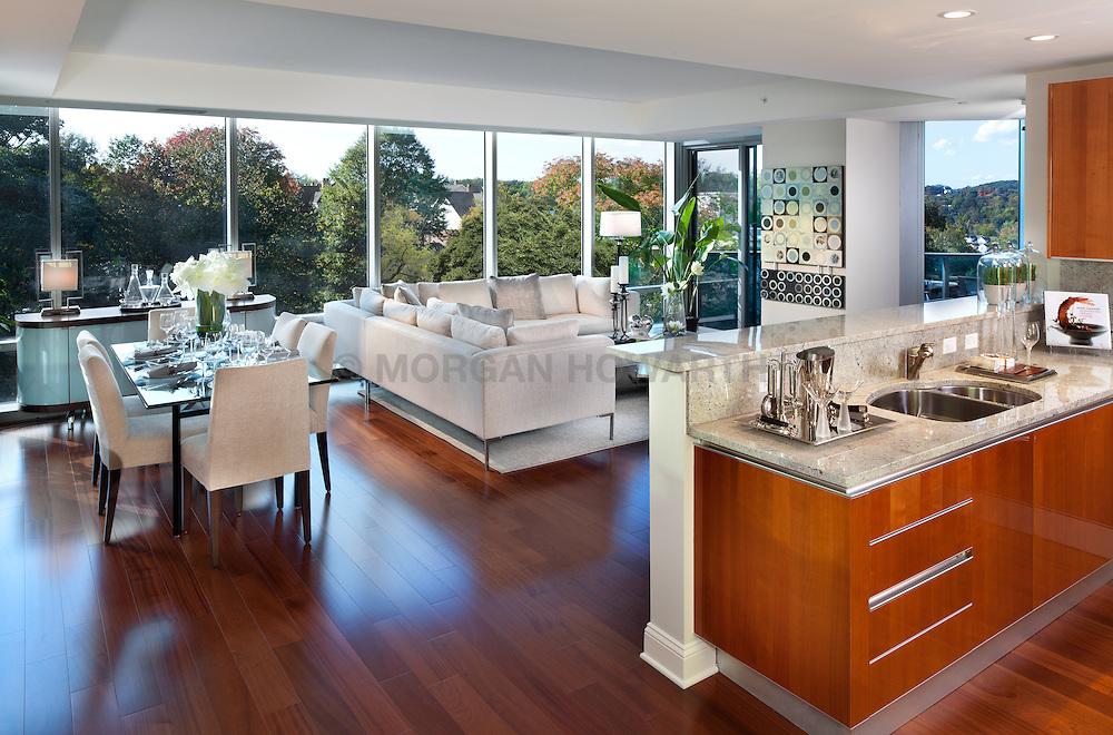1881 Nash, Arlington, Virginia Turnberry Tower condominiums Home Living Room Dining Room