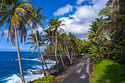 Road, Puna Coastline, Big Island of Hawaii, Hawaii