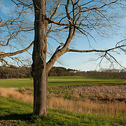 Appleton Farms in Ipswich and Hamilton, Massachusetts looks almost as it did over 300 years ago.