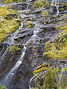 Waterfalls in the vicinity of Milford Sound, along Highway 94, Fiordland National Park, New Zealand, after a heavy rain event.