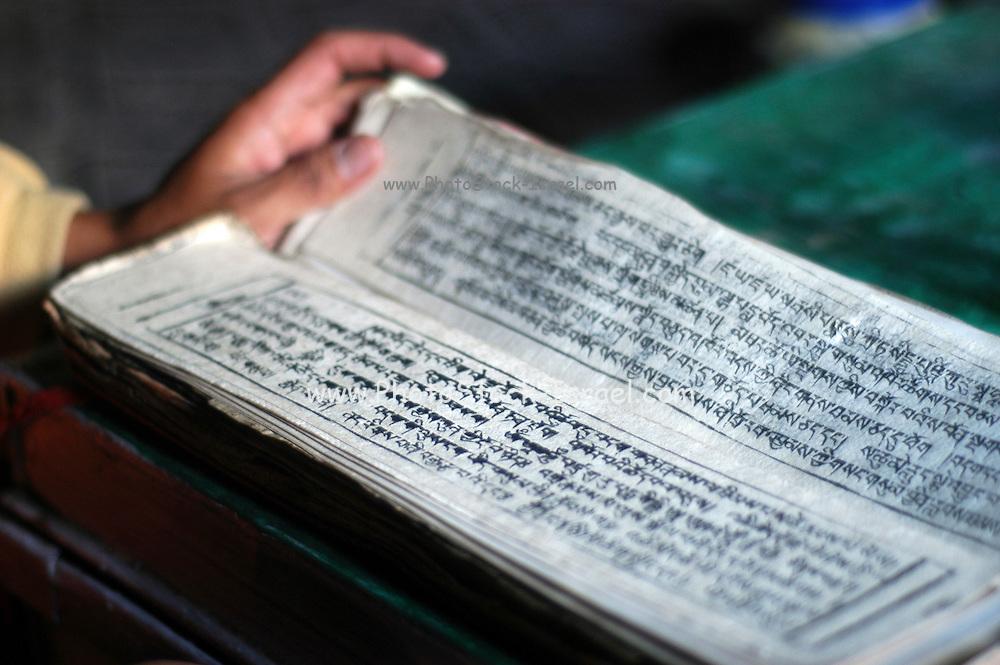 India, Ladakh region state of Jammu and Kashmir, Hemis Gompa near Leh, Buddhist scriptures