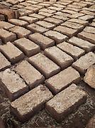 Freshly made bricks dry in the sun in the Skoura Oasis, Morocco