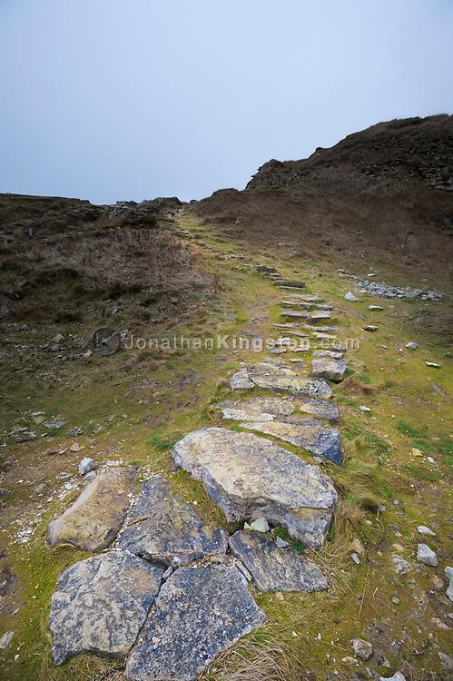 Stone steps on a grassy hillside in Dorset, England.