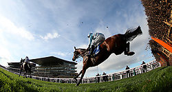 Twobeelucky ridden by A.E.Lynch during day two of the Showcase at Cheltenham Racecourse