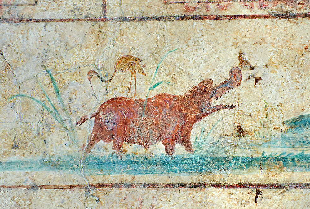 Roman Fresco of a hippo bird from  The Large Columbarium in Villa Doria Panphilj, Rome. A columbarium is usually a type of tomb with walls lined by niches that hold urns containing the ashes of the dead.  Large columbaria were built in Rome between the end of the Republican Era and the Flavio Principality (second half of the first century AD).  Museo Nazionale Romano ( National Roman Museum), Rome, Italy. .<br /> <br /> If you prefer to buy from our ALAMY PHOTO LIBRARY  Collection visit : https://www.alamy.com/portfolio/paul-williams-funkystock/national-roman-museum-rome-fresco.html<br /> <br /> Visit our ROMAN ART & HISTORIC SITES PHOTO COLLECTIONS for more photos to download or buy as wall art prints https://funkystock.photoshelter.com/gallery-collection/The-Romans-Art-Artefacts-Antiquities-Historic-Sites-Pictures-Images/C0000r2uLJJo9_s0