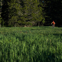 Tim Banfield mountain Biking the Plateau trail in Cypress Hills Provincial Park, Elkwater, AB, Canada
