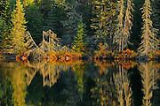 Shoreline along Isabel Lake<br />Kenora<br />Ontario<br />Canada