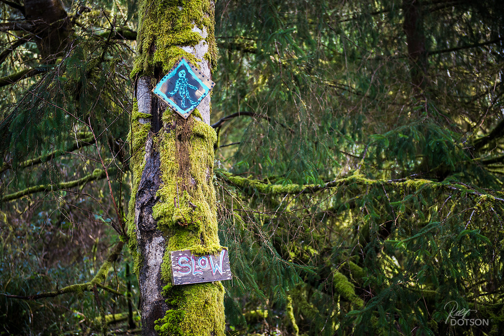Fun sign along a back road in the Northwest.